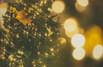 沖縄のイルミネーションおすすめスポット!クリスマスやホテルのイベントは?
