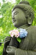 神奈川で有名な神社9選!パワースポット・御朱印巡りにおすすめの場所は?