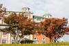 大阪中之島のおすすめスポット巡り!おしゃれなカフェや図書館・美術館も
