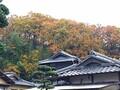 岡山観光で桃太郎のルーツをめぐる!伝説発祥の地やまつりの情報などもご紹介