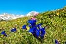 北海道のおすすめ離島と人気観光スポット!自然あふれる魅力的な旅を楽しむ!