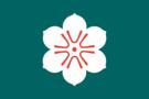 佐賀で神社巡り!ご利益のあるパワースポットで体も心も癒やされる