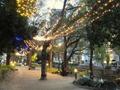 岡山でインスタ映えを狙う!おしゃれなカフェなどおすすめスポットを厳選