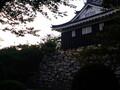 浜松城の歴史観光へ!お城と公園のおすすめスポットや見どころをチェック