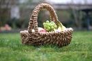 東京のおすすめ公園21選!休日は都内でのんびりピクニックはいかが?