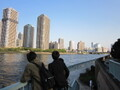 東京でのんびり散歩!自然・公園・街歩きおすすめのコースは?