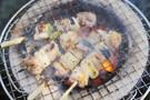 東京で美味しい焼き鳥が食べたい!名店からコスパ最高の人気店まで!