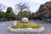 上野公園の楽しみ方・見どころを徹底紹介!アクセスや駐車場情報も