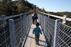 静岡は絶景吊り橋の宝庫!夢の吊り橋(寸又峡)や三島スカイウォークなど