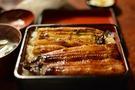 浜松で美味しいうなぎの有名店を紹介!地元民がおすすめの鰻屋さんも