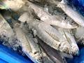 熱海のおすすめ名物19選!地元の美味しい海鮮グルメや人気のお土産は?