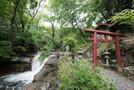 恋愛成就のパワースポット・美瑛神社を参拝!人気の御朱印や隠れハートって?