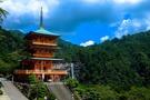 高知の人気神社・仏閣ランキングTOP9!ご利益が期待できるパワースポットも?