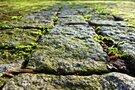 山口県の岩国城を巡る旅!「錦帯橋」の見どころや城下町のおすすめスポットも?