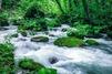 奥入瀬渓流・ハイキングの見どころをチェック!おすすめ散策道や人気の宿もご紹介