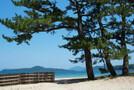 山口県の人気観光地を厳選!絶景の名所やおすすめ穴場スポットを一挙紹介