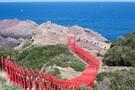 山口県にある鳥居のトンネルが絶景!海へ続く元乃隅稲成神社は強力パワースポット