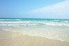 伊豆白浜海岸の魅力・楽しみ方!白浜神社の海浜鳥居などインスタ映えスポットも?