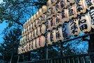 浅草で歴史あるお祭りを楽しもう!有名な三社祭の見どころは?