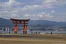 宮島でおすすめ人気グルメ11選!定番のお好み焼きやあなごめしを堪能しよう