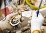 宮島でおすすめしたい牡蠣料理屋9選!ご当地の人気店から牡蠣小屋まで