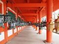 奈良のインスタ映えスポットへ出かけよう!かわいいカフェやおいしいディナーは?