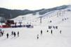 軽井沢の冬はスキー場で決まり!初心者や子供も楽しめるおすすめのゲレンデは?