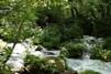 仁淀川のおすすめキャンプ場を紹介!清流沿いの豊かな自然を満喫しよう