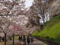 人気の上田城とその周辺を観光しよう!真田ゆかりの地の見どころは?