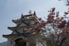 宇和島のおすすめランチランキングTOP21!人気個室店からおしゃれカフェまで