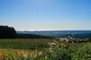 【山形】庄内平野の観光やおすすめグルメまとめ!絶景の田園風景や米作り体験も?