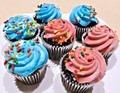 三宮のお土産おすすめランキングTOP17!定番のお菓子や喜ばれる人気の雑貨も