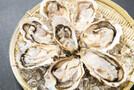 相生で食べたいおすすめ牡蠣特集!牡蠣小屋や直売所・ランチ人気店ご紹介