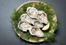 赤穂の定番・牡蠣祭りに行きたい!旬に味わえる場所・日程やアクセス情報も!