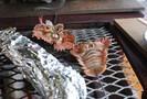 ウチワエビは伊勢海老よりも高級!美味しい食べ方や旬・産地をご紹介