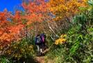 黒姫山登山にチャレンジ!初心者も楽しめるおすすめのコースは?