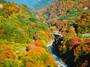 有名な心霊スポット・正丸峠へ!奥村茶屋や紅葉・ハイキングなどの見どころを紹介