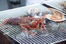 名古屋みなと漁港は海鮮バーベキューが食べ放題!詳しいメニューや料金まとめ!