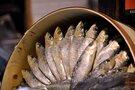 シュールストレミングは世界で一番匂いが強い食べ物!美味しい食べ方は?