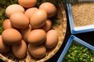 エグロワイヤルは高級卵!コンビニスイーツで手軽に味わえるって本当?
