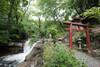 新宿・花園神社の基本情報まとめ!アクセスや御朱印・ご利益は?