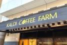 カルディで人気のシナモンロールでおうちカフェ!美味しい食べ方は?