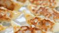 テレビでも話題の東海飯店の餃子を食べよう!人気のシュウマイもご紹介