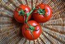 冷凍したトマトの使い方・解凍方法まとめ!パスタやサラダで美味しく食べよう