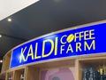 カルディの美味しいビールを徹底比較!おすすめ商品や人気の定番品までご紹介