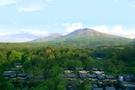 【星のや軽井沢】温泉と夏野菜で自然に夏を過ごす「軽井沢ベジタブルコンフォートステイ2020」開催!