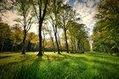 芸術と自然の名所・青葉の森公園がおすすめ!ドッグランの情報やアクセスをご紹介