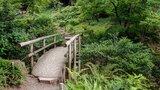 自然と歴史を楽しめる浜離宮を徹底ガイド!アクセスや周辺のおすすめスポットは?
