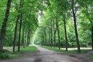 翠ヶ丘公園は藤沢で有名なおすすめスポット!散歩にも人気の公園とは?