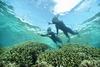 美しい珊瑚の海で心身共に癒されるプログラム「珊瑚美(ちゅ)ら滞在」